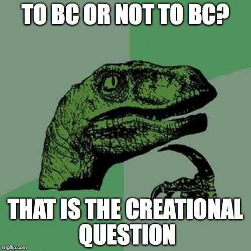 Philosoraptor Meme | TO BC OR NOT TO BC? THAT IS THE CREATIONAL QUESTION | image tagged in memes,philosoraptor | made w/ Imgflip meme maker