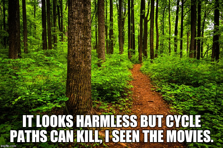 forest path | IT LOOKS HARMLESS BUT CYCLE PATHS CAN KILL, I SEEN THE MOVIES. | image tagged in forest path | made w/ Imgflip meme maker