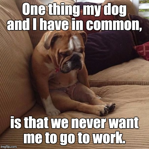 bulldogsad | One thing my dog and I have in common, is that we never want me to go to work. | image tagged in bulldogsad | made w/ Imgflip meme maker