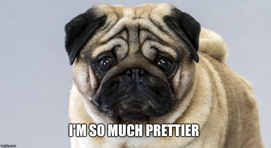 I'M SO MUCH PRETTIER | made w/ Imgflip meme maker