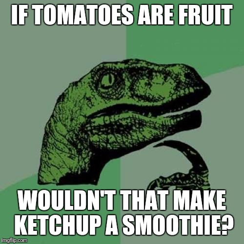 Philosoraptor Meme | IF TOMATOES ARE FRUIT WOULDN'T THAT MAKE KETCHUP A SMOOTHIE? | image tagged in memes,philosoraptor | made w/ Imgflip meme maker