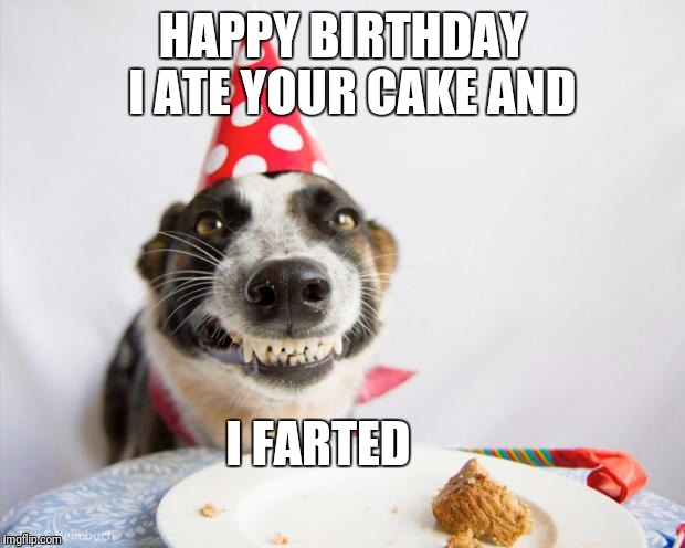 birthday dog |  HAPPY BIRTHDAY  I ATE YOUR CAKE AND; I FARTED | image tagged in birthday dog,dog,dogs,happy birthday,birthday | made w/ Imgflip meme maker
