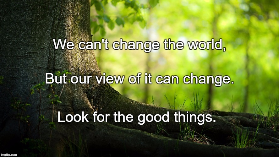 We can't change the world, Look for the good things. But our view of it can change. | image tagged in nature | made w/ Imgflip meme maker