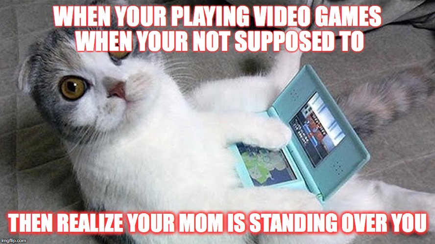 Gamer kitty | WHEN YOUR PLAYING VIDEO GAMES WHEN YOUR NOT SUPPOSED TO THEN REALIZE YOUR MOM IS STANDING OVER YOU | image tagged in cat | made w/ Imgflip meme maker