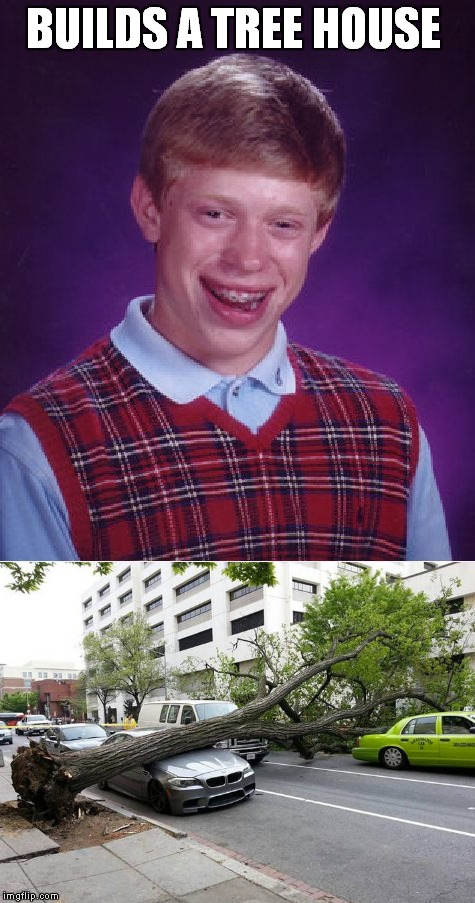 That's the Rock's cab it fell on too! | BUILDS A TREE HOUSE | image tagged in bad luck brian,tree,epic fail | made w/ Imgflip meme maker