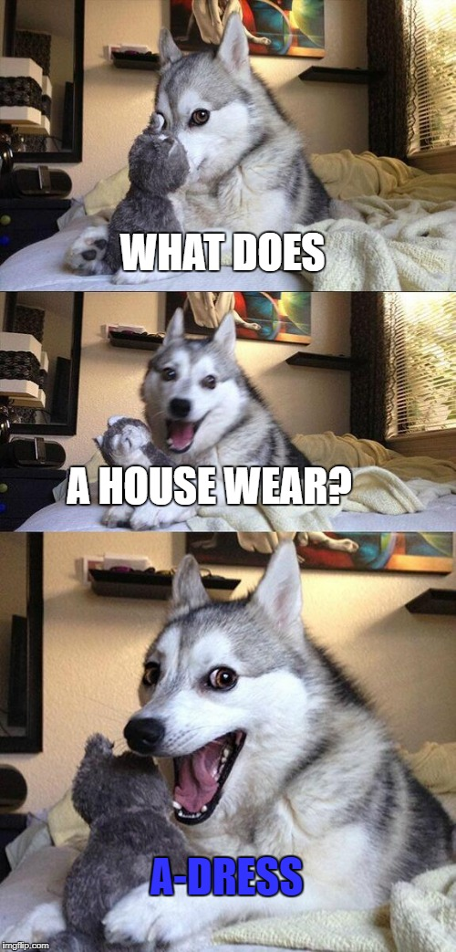Bad Pun Dog Meme | WHAT DOES A HOUSE WEAR? A-DRESS | image tagged in memes,bad pun dog | made w/ Imgflip meme maker