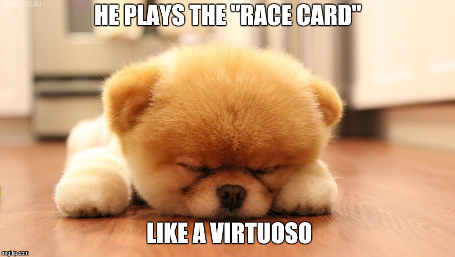 "Sleeping dog | HE PLAYS THE ""RACE CARD"" LIKE A VIRTUOSO 