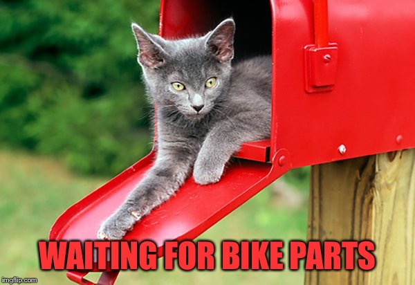 WAITING FOR BIKE PARTS | made w/ Imgflip meme maker