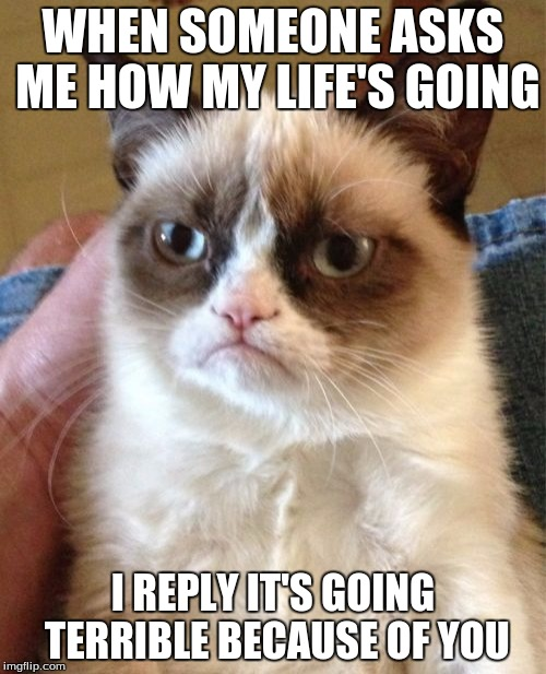 Grumpy Cat Meme | WHEN SOMEONE ASKS ME HOW MY LIFE'S GOING I REPLY IT'S GOING TERRIBLE BECAUSE OF YOU | image tagged in memes,grumpy cat | made w/ Imgflip meme maker