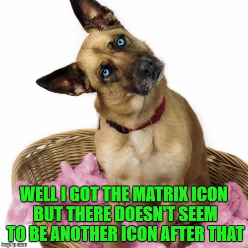 WELL I GOT THE MATRIX ICON BUT THERE DOESN'T SEEM TO BE ANOTHER ICON AFTER THAT | made w/ Imgflip meme maker