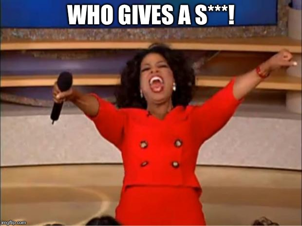 Oprah You Get A Meme | WHO GIVES A S***! | image tagged in memes,oprah you get a | made w/ Imgflip meme maker