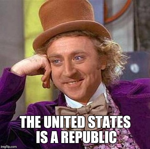 Creepy Condescending Wonka Meme | THE UNITED STATES IS A REPUBLIC | image tagged in memes,creepy condescending wonka | made w/ Imgflip meme maker