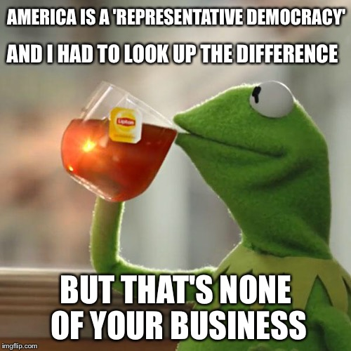 But Thats None Of My Business Meme | AMERICA IS A 'REPRESENTATIVE DEMOCRACY' BUT THAT'S NONE OF YOUR BUSINESS AND I HAD TO LOOK UP THE DIFFERENCE | image tagged in memes,but thats none of my business,kermit the frog | made w/ Imgflip meme maker
