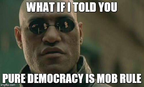 Matrix Morpheus Meme | WHAT IF I TOLD YOU PURE DEMOCRACY IS MOB RULE | image tagged in memes,matrix morpheus | made w/ Imgflip meme maker