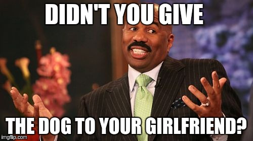 Steve Harvey Meme | DIDN'T YOU GIVE THE DOG TO YOUR GIRLFRIEND? | image tagged in memes,steve harvey | made w/ Imgflip meme maker