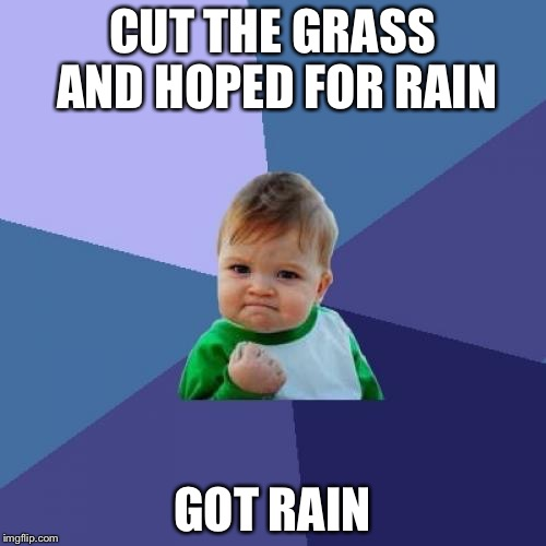 Success Kid Meme | CUT THE GRASS AND HOPED FOR RAIN GOT RAIN | image tagged in memes,success kid | made w/ Imgflip meme maker