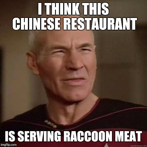 The Raccoon family I used to see all the time digging in the dumpster are AWOL | I THINK THIS CHINESE RESTAURANT IS SERVING RACCOON MEAT | image tagged in picard_disgusted,memes | made w/ Imgflip meme maker