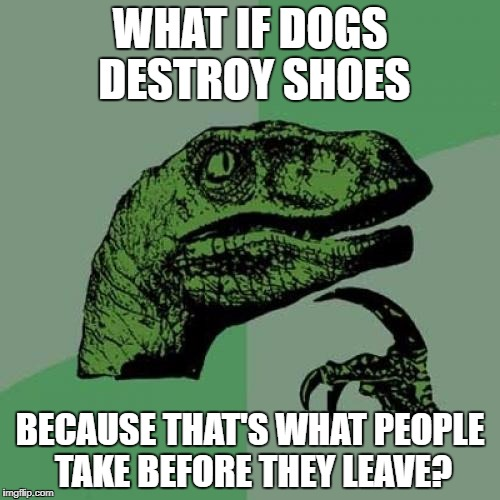 Ever wonder? | WHAT IF DOGS DESTROY SHOES BECAUSE THAT'S WHAT PEOPLE TAKE BEFORE THEY LEAVE? | image tagged in memes,philosoraptor | made w/ Imgflip meme maker
