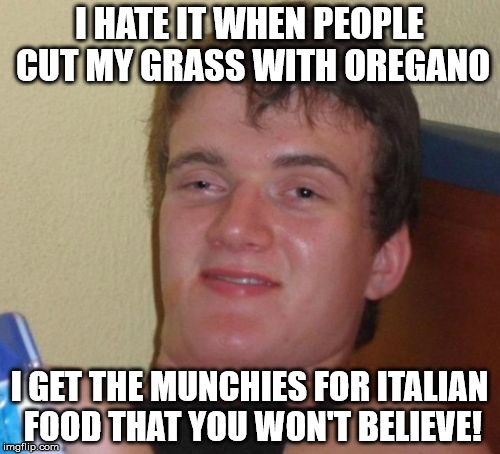 10 Guy Meme | I HATE IT WHEN PEOPLE CUT MY GRASS WITH OREGANO I GET THE MUNCHIES FOR ITALIAN FOOD THAT YOU WON'T BELIEVE! | image tagged in memes,10 guy | made w/ Imgflip meme maker