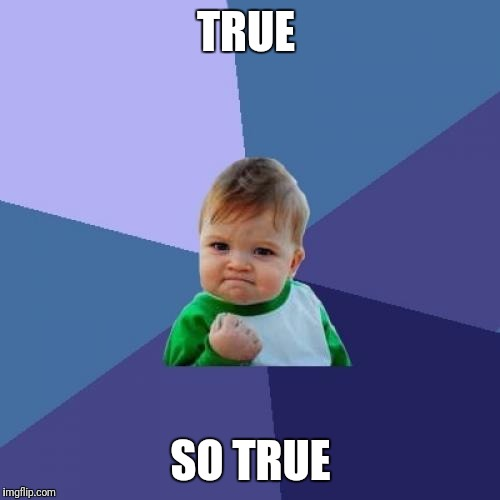 Success Kid Meme | TRUE SO TRUE | image tagged in memes,success kid | made w/ Imgflip meme maker