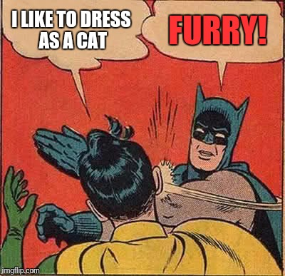 Batman Slapping Robin Meme | I LIKE TO DRESS AS A CAT FURRY! | image tagged in memes,batman slapping robin | made w/ Imgflip meme maker