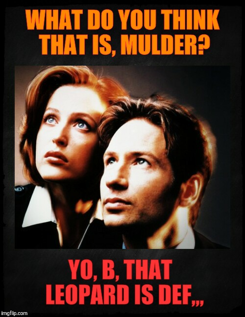 Mulder and Scully gaze to whatever,,, | WHAT DO YOU THINK THAT IS, MULDER? YO, B, THAT  LEOPARD IS DEF,,, | image tagged in mulder and scully gaze to whatever | made w/ Imgflip meme maker
