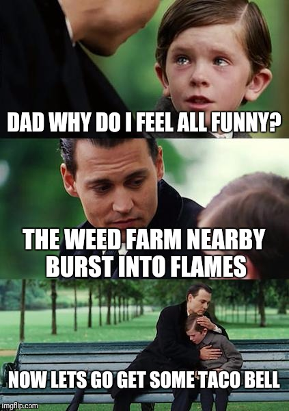 Finding Neverland Meme | DAD WHY DO I FEEL ALL FUNNY? THE WEED FARM NEARBY BURST INTO FLAMES NOW LETS GO GET SOME TACO BELL | image tagged in memes,finding neverland | made w/ Imgflip meme maker
