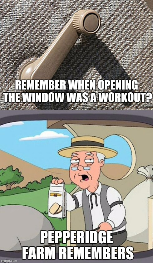Pepperidge Farm Remembers | REMEMBER WHEN OPENING THE WINDOW WAS A WORKOUT? PEPPERIDGE FARM REMEMBERS | image tagged in pepperidge farm remembers,car window | made w/ Imgflip meme maker