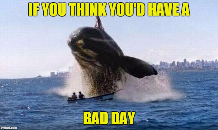 The two men survived ... but had to swim back to the land | IF YOU THINK YOU'D HAVE A BAD DAY | image tagged in bad day whale,funny,memes,whale,bad day | made w/ Imgflip meme maker