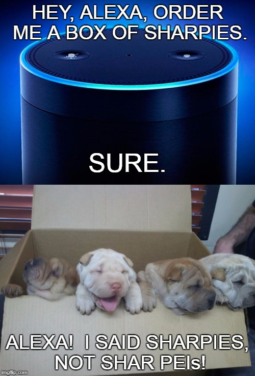 Hey, Alexa, remove my credit card from my account... | HEY, ALEXA, ORDER ME A BOX OF SHARPIES. ALEXA!  I SAID SHARPIES, NOT SHAR PEIs! SURE. | image tagged in funny memes,amazon echo,puppies,cute puppies | made w/ Imgflip meme maker