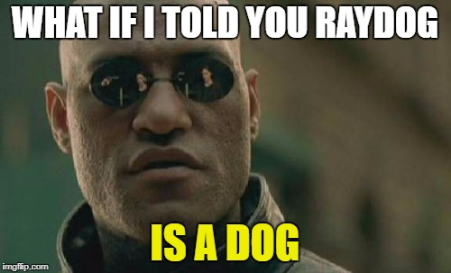 Matrix Morpheus Meme | WHAT IF I TOLD YOU RAYDOG IS A DOG | image tagged in memes,matrix morpheus | made w/ Imgflip meme maker