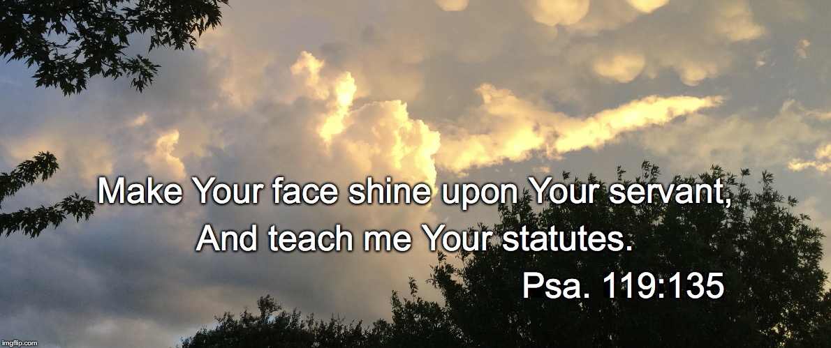 Make Your face shine upon Your servant, And teach me Your statutes. Psa. 119:135 | image tagged in shine | made w/ Imgflip meme maker