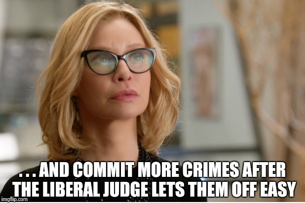 Callista Flockhart | . . . AND COMMIT MORE CRIMES AFTER THE LIBERAL JUDGE LETS THEM OFF EASY | image tagged in callista flockhart | made w/ Imgflip meme maker