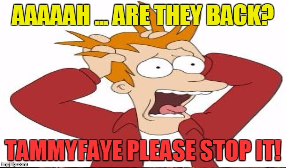 AAAAAH ... ARE THEY BACK? TAMMYFAYE PLEASE STOP IT! | made w/ Imgflip meme maker