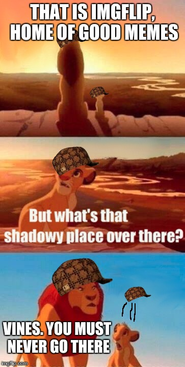 Simba Shadowy Place Meme | THAT IS IMGFLIP, HOME OF GOOD MEMES VINES. YOU MUST NEVER GO THERE | image tagged in memes,simba shadowy place,scumbag | made w/ Imgflip meme maker