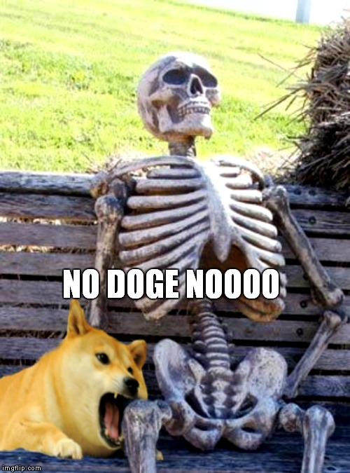 NO DOGE NOOOO | made w/ Imgflip meme maker