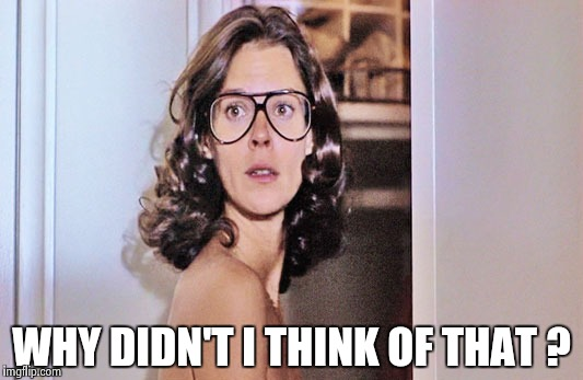 Jobeth Williams | WHY DIDN'T I THINK OF THAT ? | image tagged in jobeth williams | made w/ Imgflip meme maker