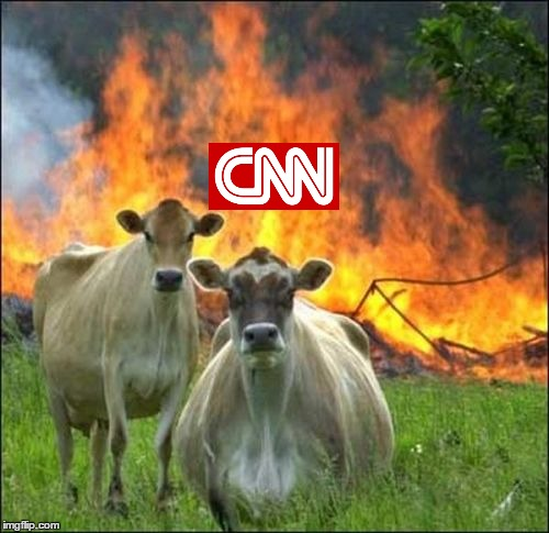 "Fake ""moos"" 