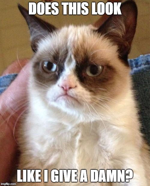 Grumpy Cat Meme | DOES THIS LOOK LIKE I GIVE A DAMN? | image tagged in memes,grumpy cat | made w/ Imgflip meme maker