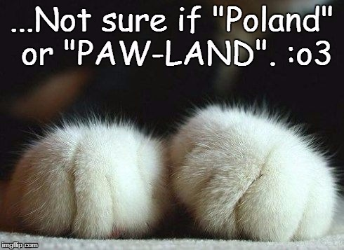 Go Paw-Land! ^_^ | image tagged in poland | made w/ Imgflip meme maker