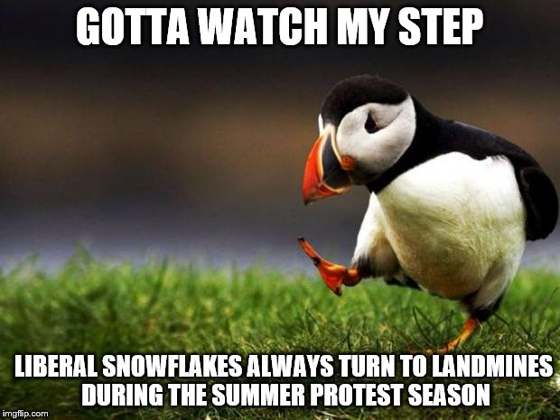 Unpopular Opinion Puffin Meme | GOTTA WATCH MY STEP LIBERAL SNOWFLAKES ALWAYS TURN TO LANDMINES DURING THE SUMMER PROTEST SEASON | image tagged in memes,unpopular opinion puffin | made w/ Imgflip meme maker