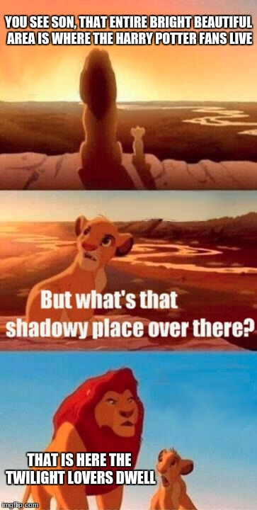 The truth lurks out there... | YOU SEE SON, THAT ENTIRE BRIGHT BEAUTIFUL AREA IS WHERE THE HARRY POTTER FANS LIVE THAT IS HERE THE TWILIGHT LOVERS DWELL | image tagged in memes,simba shadowy place | made w/ Imgflip meme maker