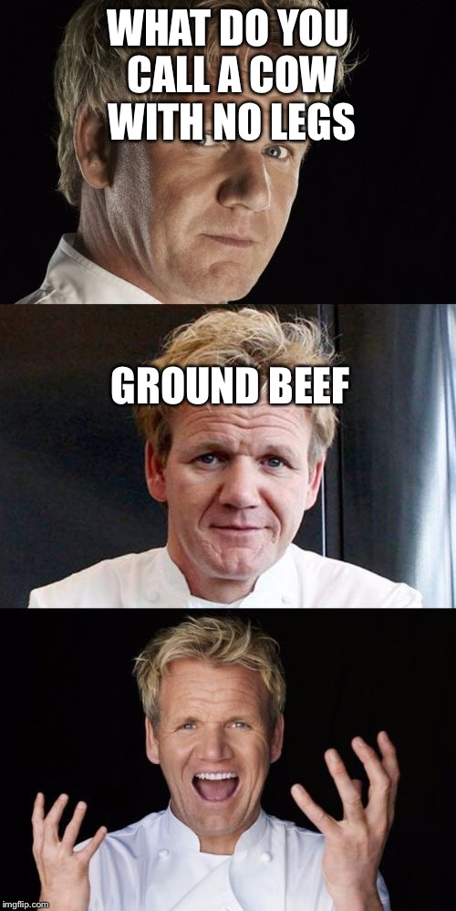 Bad Pun Chef | WHAT DO YOU CALL A COW WITH NO LEGS GROUND BEEF | image tagged in bad pun chef,gordon ramsay,cow,ground beef | made w/ Imgflip meme maker