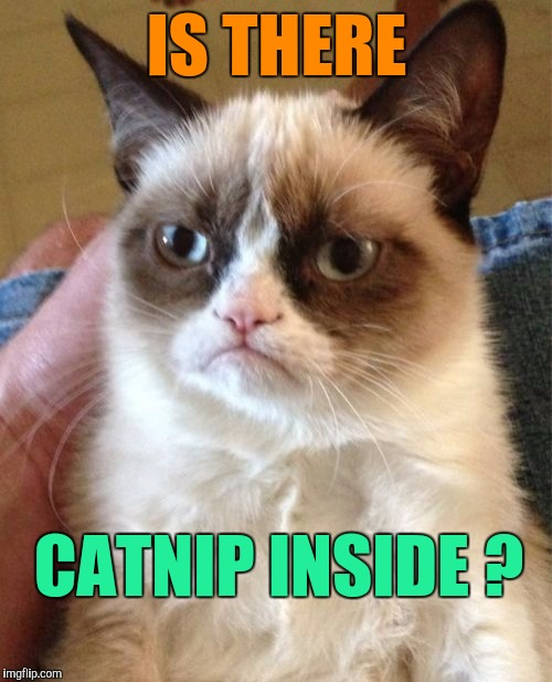 Grumpy Cat Meme | IS THERE CATNIP INSIDE ? | image tagged in memes,grumpy cat | made w/ Imgflip meme maker