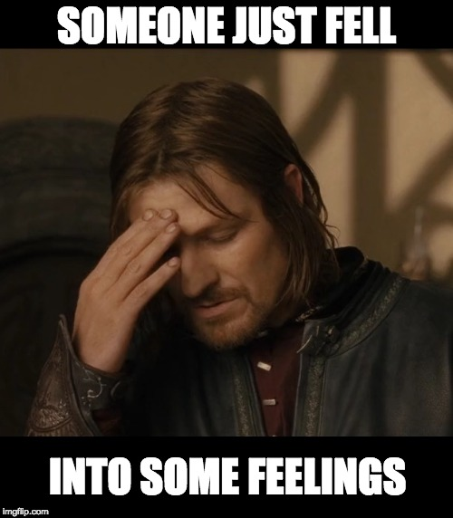 LOTR Boromir | SOMEONE JUST FELL INTO SOME FEELINGS | image tagged in fell,into,some,feelings,lotr,boromir | made w/ Imgflip meme maker