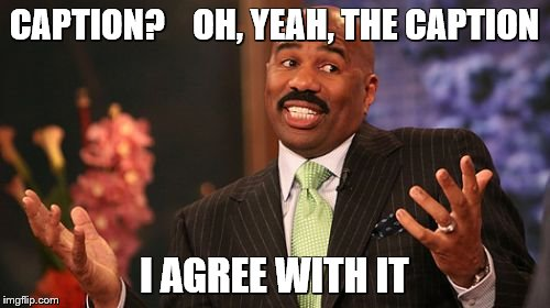 Steve Harvey Meme | CAPTION?    OH, YEAH, THE CAPTION I AGREE WITH IT | image tagged in memes,steve harvey | made w/ Imgflip meme maker