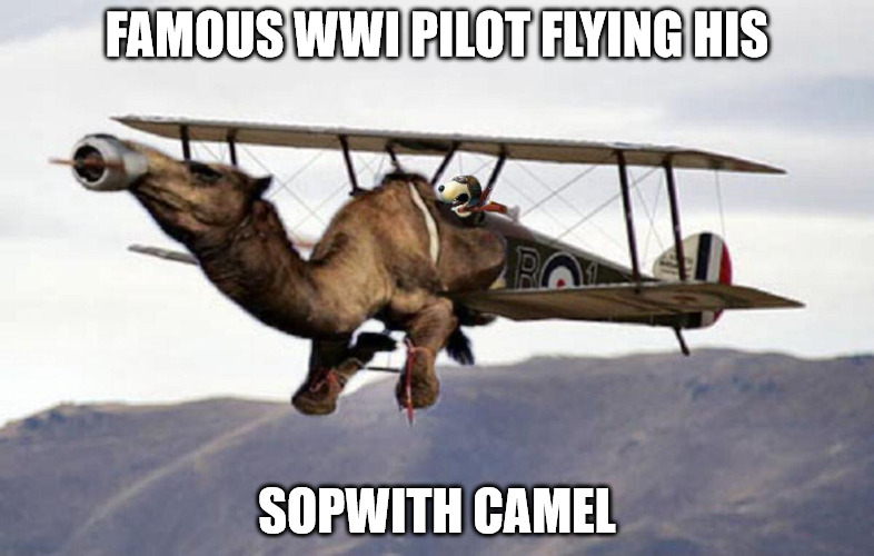 amazing what things I can find, or make from what I find.  | FAMOUS WWI PILOT FLYING HIS SOPWITH CAMEL | image tagged in snoopy,sopwith camel,photoshop,memes | made w/ Imgflip meme maker