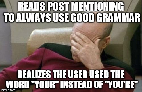"Captain Picard Facepalm Meme | READS POST MENTIONING TO ALWAYS USE GOOD GRAMMAR REALIZES THE USER USED THE WORD ""YOUR"" INSTEAD OF ""YOU'RE"" 