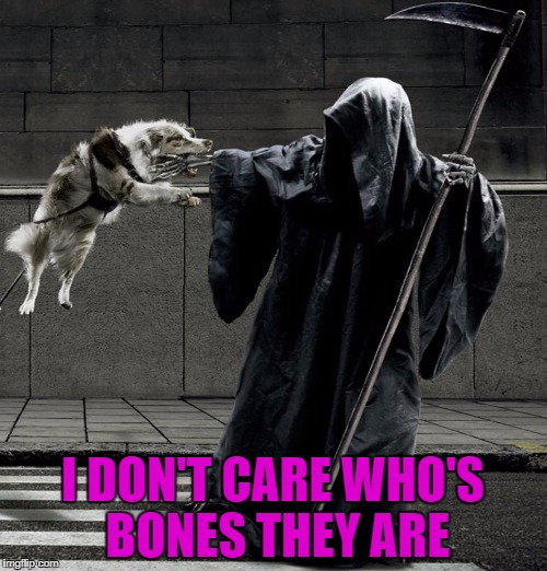 I DON'T CARE WHO'S BONES THEY ARE | made w/ Imgflip meme maker