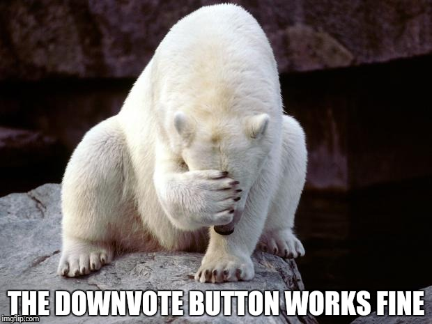 Polar Bear | THE DOWNVOTE BUTTON WORKS FINE | image tagged in polar bear | made w/ Imgflip meme maker